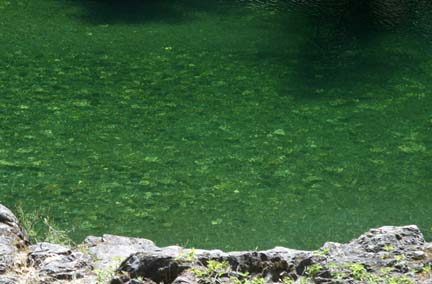 Clear green water at Sooke Potholes.