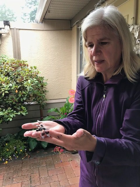 Maria Koropecky Ammolite Wellness Coach with Dragonfly.